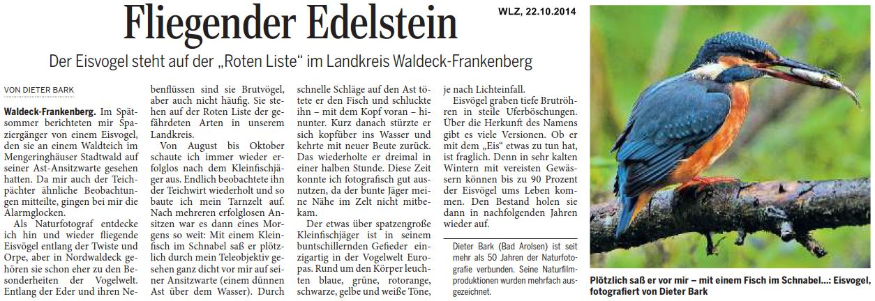 start willkommen beim nabu waldeckfrankenberg